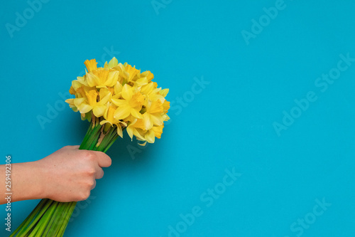 Female hand with a bouquet of the yellow narcissuses