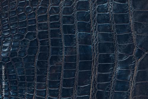 Autocollant pour porte Crocodile Glossy crocodile leather texture