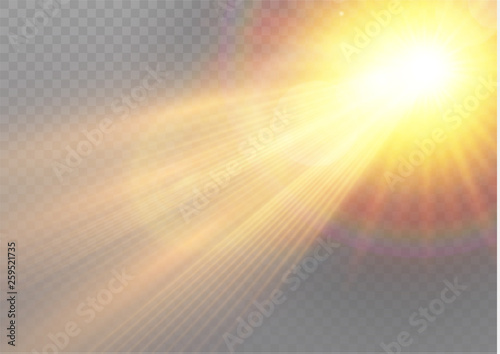 Photo  Vector transparent sunlight