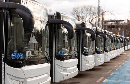 Canvastavla New modern busses on LPG