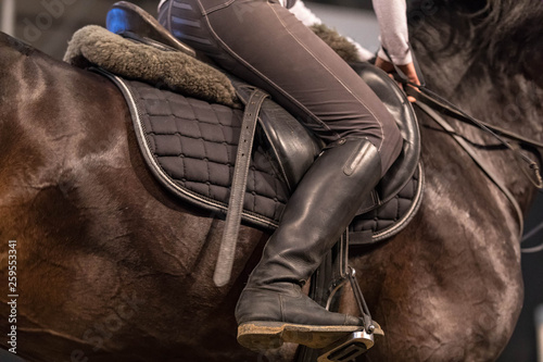 Photo Close up of the sportswoman astride a horse in shape for riding