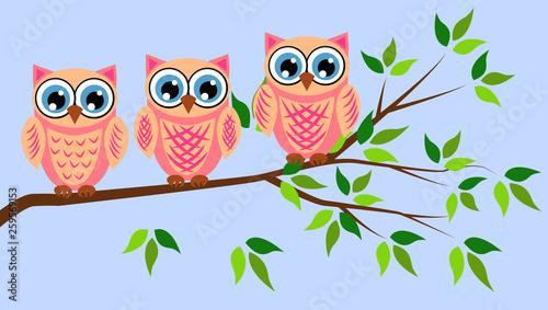 Poster Uilen cartoon Cute girl owls. Baby showers, parties for baby girls.
