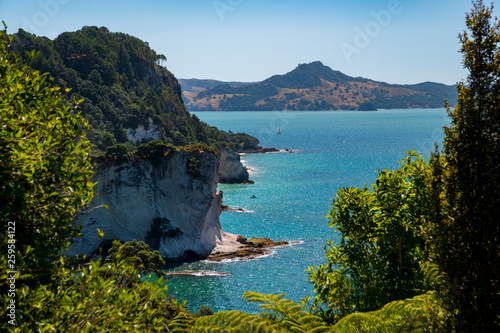 Foto auf AluDibond Cathedral Cove Chathdral cove, Coromandel, New Zealand North Island travelling destination in a beautiful day.