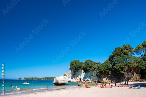 Spoed Foto op Canvas Cathedral Cove 2019 FEB 19, New Zealand, Coromandel - Chathdral cove the travelling destination in a beautiful day.
