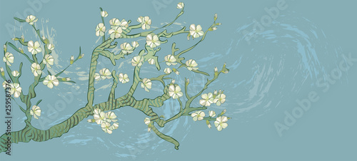Photo  Spring almond branch, flowers in vector