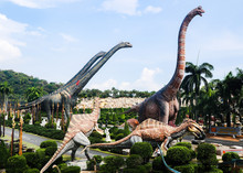 Beautiful Dinosaurs Statue In ...