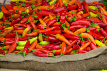 Serrano Red Hot Chili Peppers In The Market