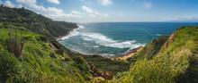 Impressive Bluff Cove Panorama