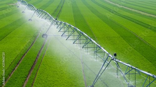 Cuadros en Lienzo  Center Pivot Irrigation System in a green Field