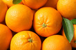 canvas print picture - Pile of ripe oranges as background, top view