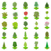 Kind Of Tree Icons Set. Isometric Set Of 25 Kind Of Tree Vector Icons For Web Isolated On White Background