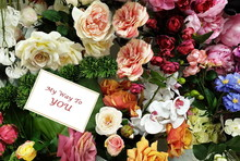 Greetings Card Floral Backgro...