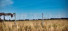 Wind Turbines In Backgraund