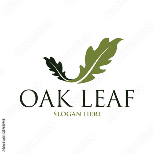 Tablou Canvas Oak leaf vector logo isolated. Logo templates.