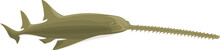 Vector Green Sawfish
