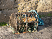 Modern Fish Trap, For Fish Ind...