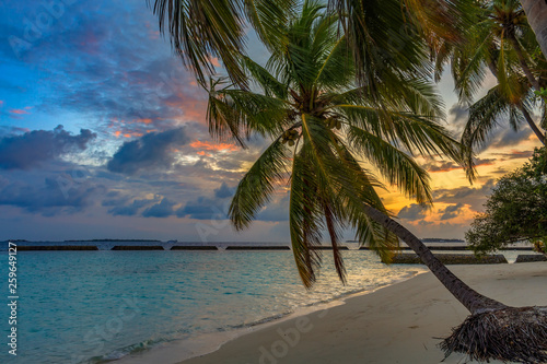 Sunrise on tropical beach at Maldives palm trees and turquoise water
