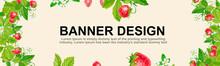 Spring Strawberry Flower Banner Background