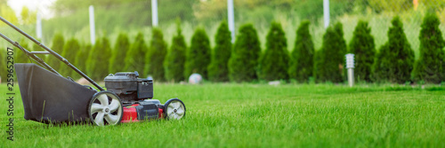 Slika na platnu Lawn mower cutting green grass