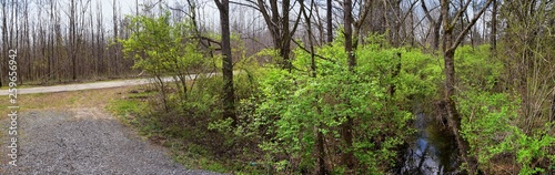 Photo  Views of Nature and Pathways along the Shelby Bottoms Greenway and Natural Area Cumberland River frontage trails, bottomland hardwood forests, open fields, wetlands, and streams, Nashville, Tennessee