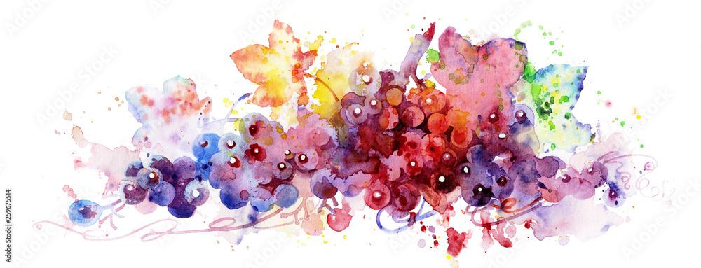 Fototapeta red grape - obraz na płótnie