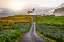 Ingjaldsholl Church In Hellissandur, Iceland In The Field Of Blooming Lupine Flowers With Background Of Snaefellsjokull Mountain. Beautiful Sunny Scenery Of Summer In Iceland.