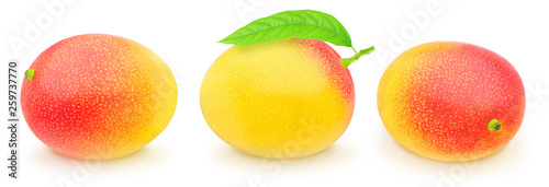 Photo  Set of juicy mangoes isolated on a white.