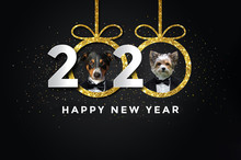 Happy New Year 2020 With Two D...