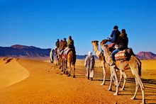 Caravana De Camellos En El Sahara De Marruecos. Concepto De Viajes Y Aventuras Exóticas.