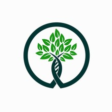 DNA And Tree Logo
