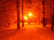 canvas print picture - lantern in the winter Park at night