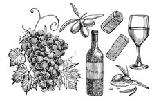 Set Of Vine Products. Illustration In Sketch Style. Hand Drawn Design Elements. Isolated On White Background. Engraving Style Illustrations.