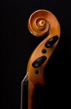 Details Of Violin Head