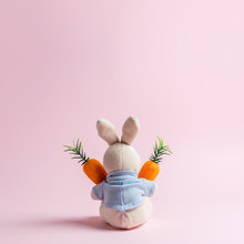 White Rabbit Doll With Carrot ...
