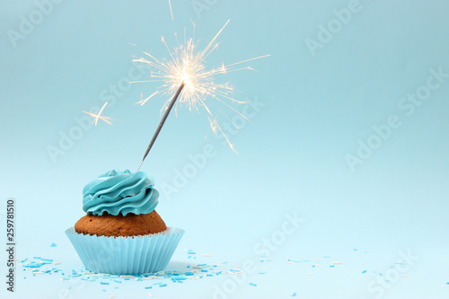 cupcake with sparkler on a colored background Canvas Print