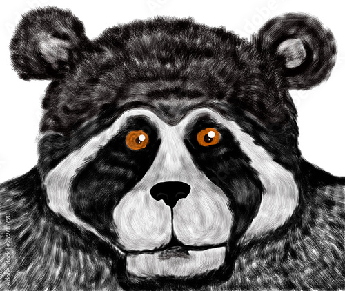 Canvas Prints Hand drawn Sketch of animals Oso