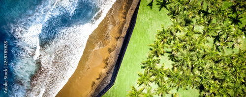 Aerial photo of green palms and sea with beach Canvas Print