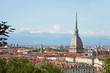 Mole Antonelliana tower and Turin rooftops seen from the hills in a sunny summer day in Italy