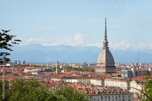 Mole Antonelliana tower and Turin rooftops seen from the hills in a sunny summer Wallpaper Mural