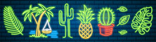 Set Of Fashion Neon Sign. Cactus And Pineapple, Tropical Plants, Palm Trees And Leaves. Night Bright Signboard, Glowing Light Banner. Summer Logo For Club Or Bar On Dark Background. Editable Vector.