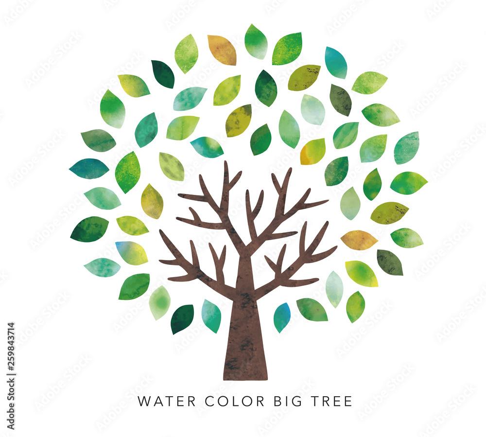 Fototapety, obrazy: 水彩の大木
