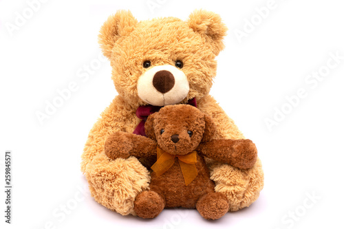 Two small and big brown teddy bear isolated on white background. #259845571