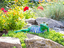 A Garden Sculpture Of A Frog Lying On The Floor Reading A Book