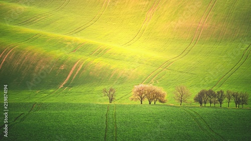 Tuinposter Zwavel geel Sunset landscape photo of Moravian Tuscany in Czech Republic