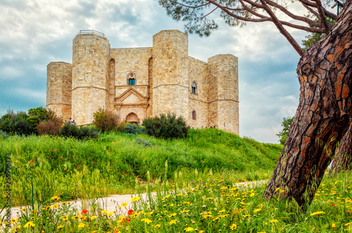 Castle of the Mountain (Castel del Monte) is a 13th-century castle situated on a hill in Andria in the Apulia region of southeast Italy Wallpaper Mural