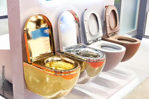 Fotografia  Flush toilet in store