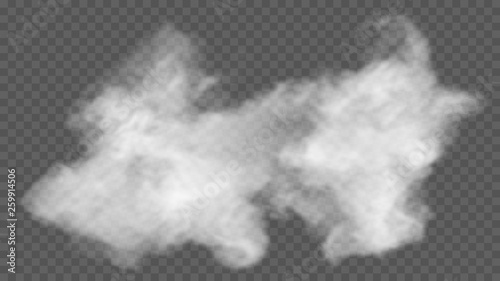 Garden Poster Smoke Transparent special effect stands out with fog or smoke. White cloud vector, fog or smog