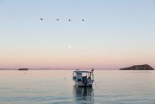 Boat On Sea Of Cortez Before Dawn