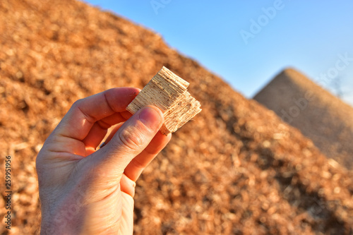 Fototapeta wood chips wooden biomass business