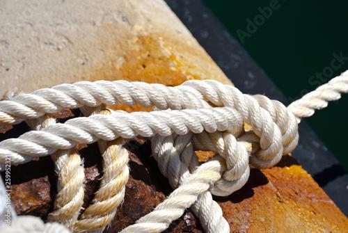 Fotografie, Obraz  Sea knot in port